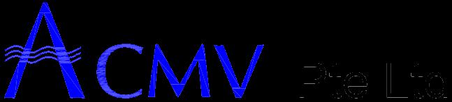 ACMV Pte Ltd